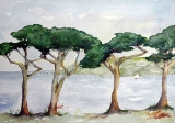 fourtrees.jpg