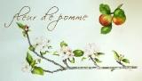 fleurdepomme.jpg